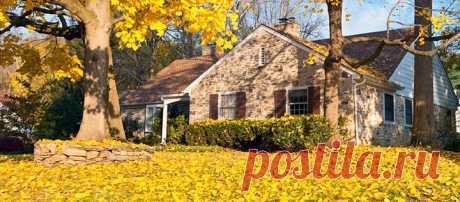 Когда и в какое время года (период, сезон) выгоднее всего покупать дачу, дом или коттедж?