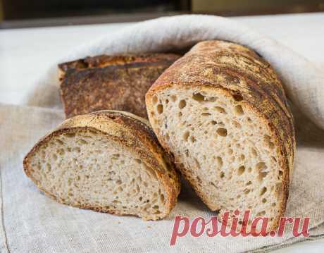Кулинарный практикум: Как вырастить закваску для хлеба - Вкусный Блог