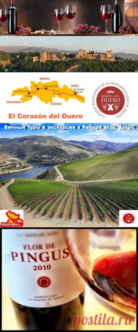 Винная экскурсия из Мадрида в Рибера дель Дуэро Ribera del Duero, дегустация вина , посещение лучших виноделен (бодег) Доминио де Пингус  , Вега Сицилия , Бодегас Мауро , музея  вина Пеньяфьель
