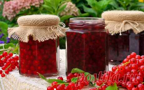 What to prepare from currant for the winter – simple recipes of tasty preparations \u000a\u000a\u000aCurrant – the tasty berry rich with vitamin C and containing natural pectin. It perfectly is suitable for preparations of jam, jam, jelly and compotes. In our selection of recipes with currant you will find …