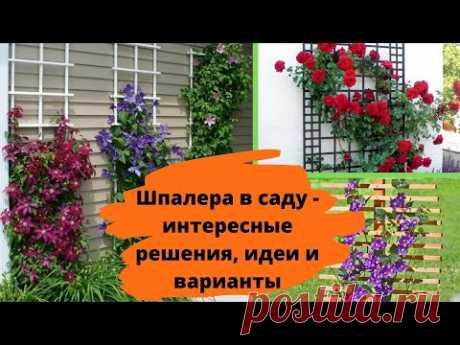 Шпалера в саду - интересные решения, идеи и варианты
