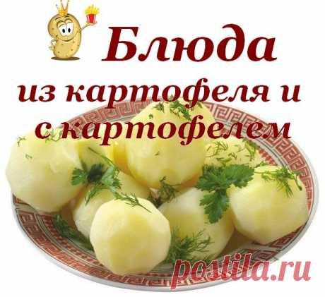 Блюда из картофеля и с картофелем.