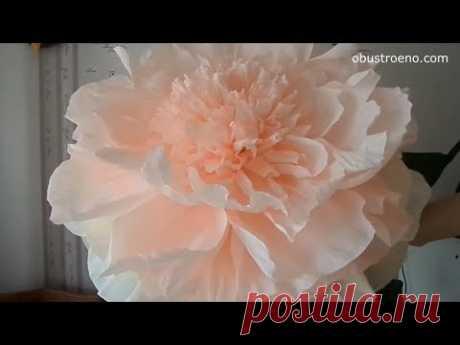 """Видео мастер-класс из цикла """" цветы из бумаги"""" на тему """"как сделать своими руками гофрированный цветок"""". Наш блогер в своем уроке покажет, как сделать ростов..."""