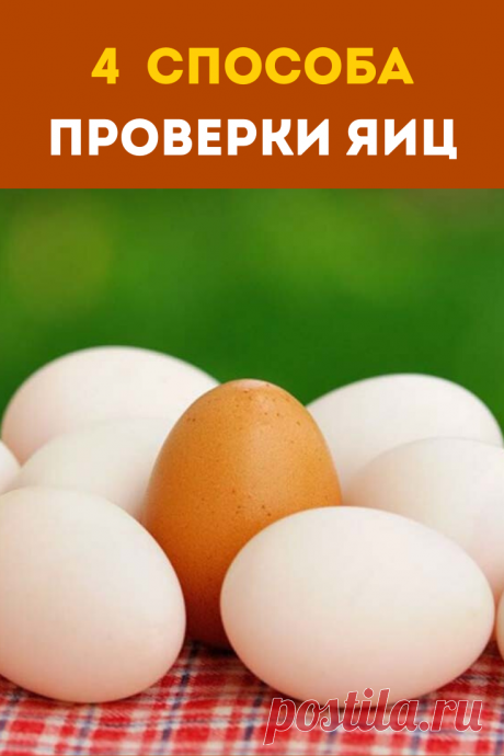 Свежие или нет? 4 способа проверки яиц