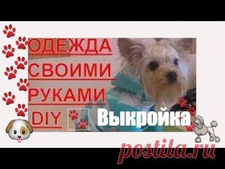 Одежда для собак своими руками  выкройка  DIY МК часть 2