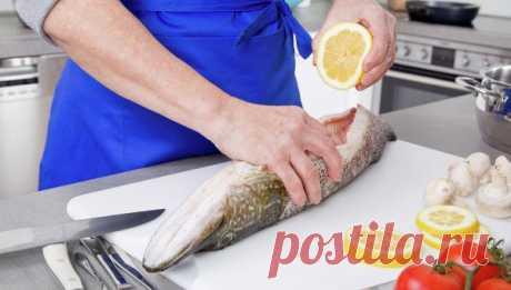 Рыба и главное о ней — Всегда в форме!