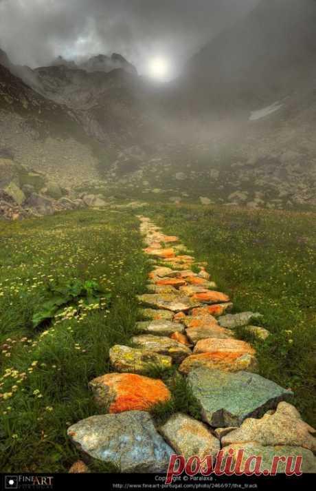 Belgique | colorel11: orange pathway