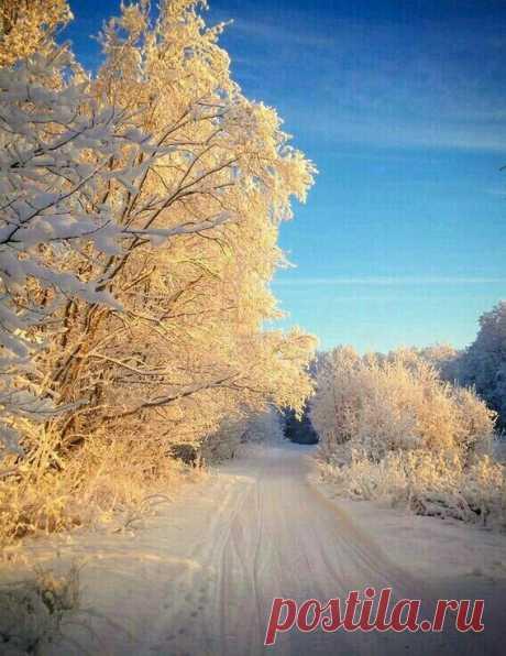 El amanecer invernal