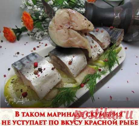 В таком маринаде скумбрия не уступает по вкусу красной рыбе Ингредиенты: - Скумбрия (замороженная, разморозить) 2 шт - лук репчатый по вкусу - вода 250 мл - гвоздика 6 шт - перец горошком шепотка - перец душистый молотый 1/3 ч л - зерна кориандра шепотка - соль 2 ч л - сахар 0,5 ч л - масло подсолнечное 2 ст л - уксус яблочный 2,5 ст л Приготовление: 1. Скумбрию почистить, порезать на кусочки. 2. Воду вскипятить, добавить туда соль, сахар, гвоздику, перец горошком и молоты...