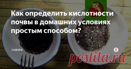 Как определить кислотности почвы в домашних условиях простым способом? Кислотность почвы - очень важный показатель. От этого параметра во многом зависит то, как посаженные растения будут расти и развиваться, какой дадут нам урожай. С годами почва неизбежно закисляется, это вполне естественный биологический процесс. Из-за чего? От избытка влаги и вымывания кальция из грунта, от