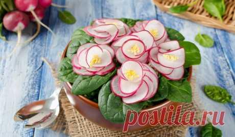 Удивительно красивый салат «Фиалка» - Лайфхакер