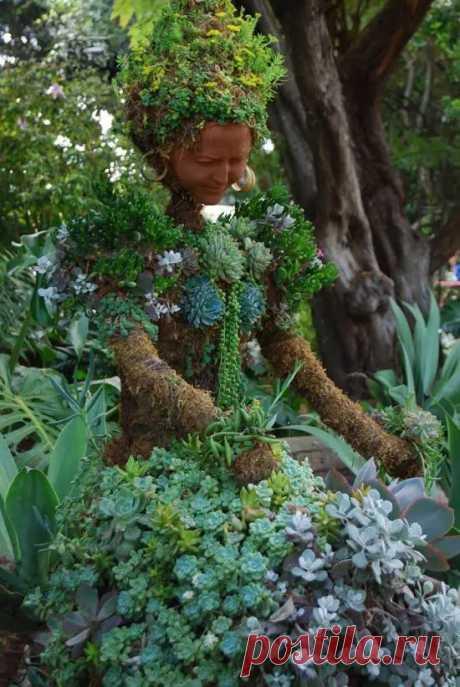Отличные идеи чудных топиариев - Огород, сад, балкон - медиаплатформа МирТесен