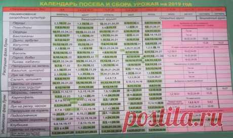 Лунный посевной календарь 2019. Сибирь. Садоводам и огородникам на заметку | Дача