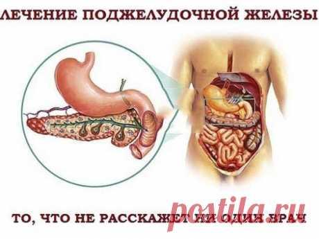✔ ПОЛЕЗНОСТИ :  Сохраните, чтобы не потерять. ЛЕЧЕНИЕ ПОДЖЕЛУДОЧНОЙ ЖЕЛЕЗЫ НАРОДНЫМИ МЕТОДАМИ  То, чего не расскажет ни один врач! Поджелудочная железа — один из важных внутренних органов  человеческого тела, который отвечает за наше пищеварение. Сбой в работе поджелудочной чреват осложнениями и целым рядом заболеваний, таких как панкреатит или сахарный диабет. К счастью, есть прекрасные народные средства, которые помогают лечить этот орган не хуже лекарств. Если у тебя есть проблемы с этим ва