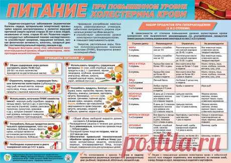 Питание при повышенном уровне холестерина крови