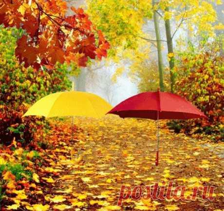 Осень дождиком в окошко постучится, Наводя на мысли о былом, Может быть, кому-нибудь не спится, Только речь сегодня не о том.  Речь пойдет об осени дождливой, О туманах, ледяной росе, О поре такой неторопливой И о солнечном одном осеннем дне.  Речь пойдет об осени ненастной, Что наводит грусть на всех подряд, И ее частичке сладострастной, О которой много говорят.