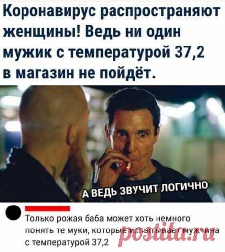 """Рубрика """"Карантин никто не отменял"""": свежие мемы этой недели   Gerda - обо всем   Яндекс Дзен"""