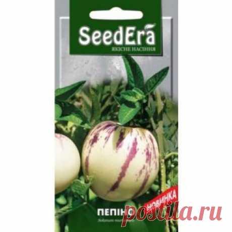 Купить семена: Пепино - цены,фото,отзывы   Green-Club.com.ua