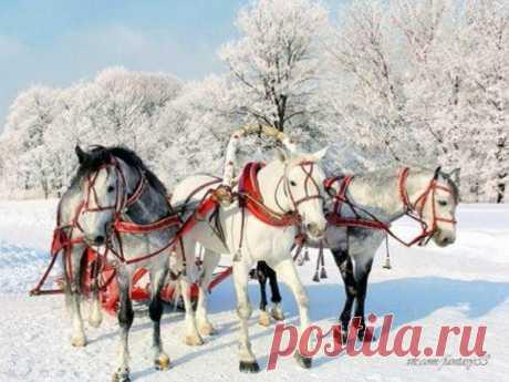 Russian winter...
