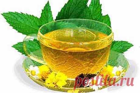 >> Кишечник - Лечение кишечника народными средствами и методами