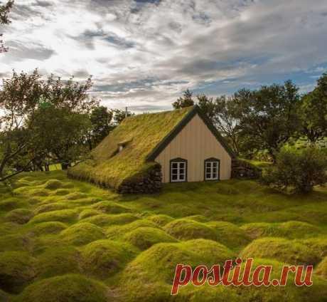Маленький домик, захваченный исландским мхом