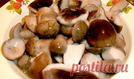 Как приготовить маринад для грибов (опят, маслят, белых и т. д. ) - рецепт, ингредиенты и фотографии