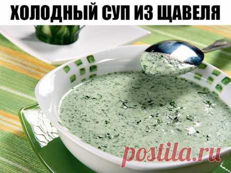 Холодный суп из щавеля ПО ИДЕАЛЬНОМУ РЕЦЕПТУ Сегодня нам предстоит приготовить еще одно национальное летнее блюдо русской кухни — холодный щавелевый суп с огурцами и яйцами. Многим может показаться,
