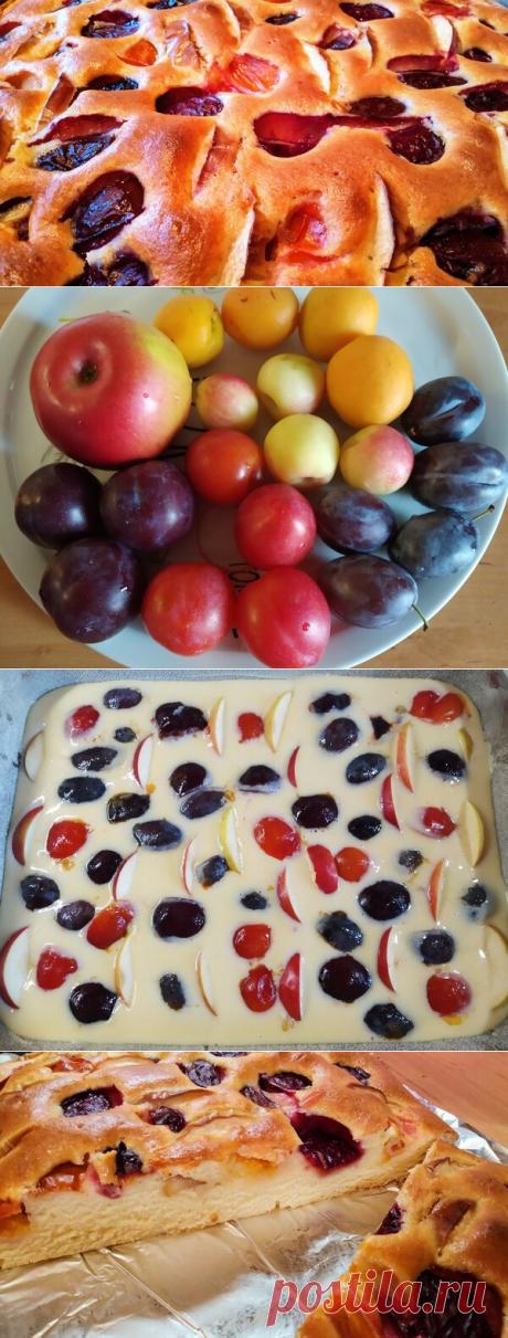 Простой рецепт. Творожный пирог со сливами