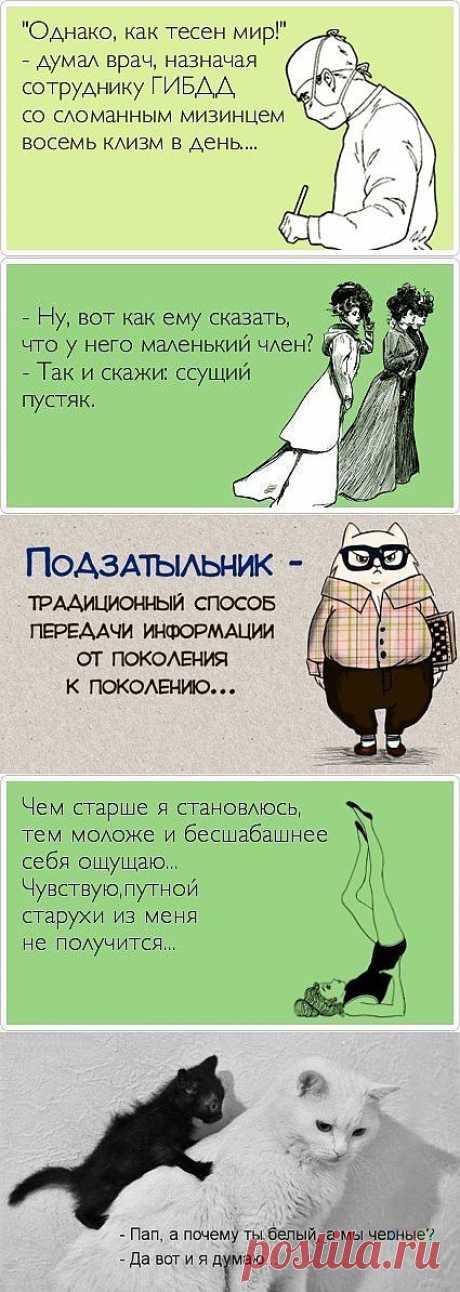 Александра Легостаева: Смешные фото | Постила.ru
