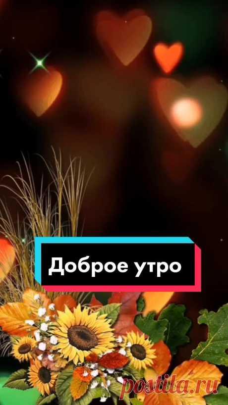 🌹Надежда🌹 (@_nadya635) TikTok   Смотреть свежие видео 🌹Надежда🌹 в TikTok