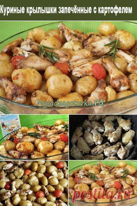 Куриные крылышки запечённые с картофелем и помидорами - Мой сад