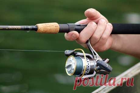 Выбираем катушку Рыболовные катушки сегодня - непременный аксессуар рыбака, хотя когда-то они использовались исключительно как вариант хранения лески. Сегодня катушки