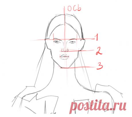 В лице самое главное — симметрия и пропорции.