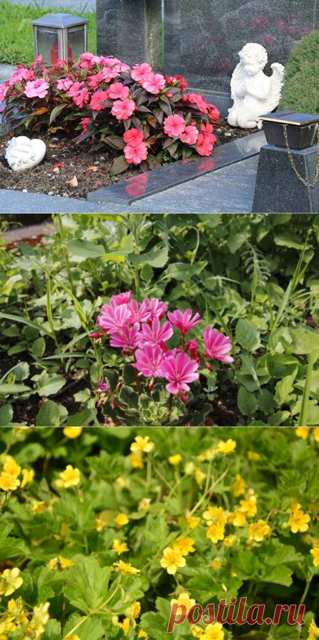 Pflegeleichte Grabbepflanzungen im Sommer: Beispiele & Tipps