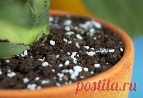 Универсальное органическое удобрение для комнатных цветов и растений: влияние на почву