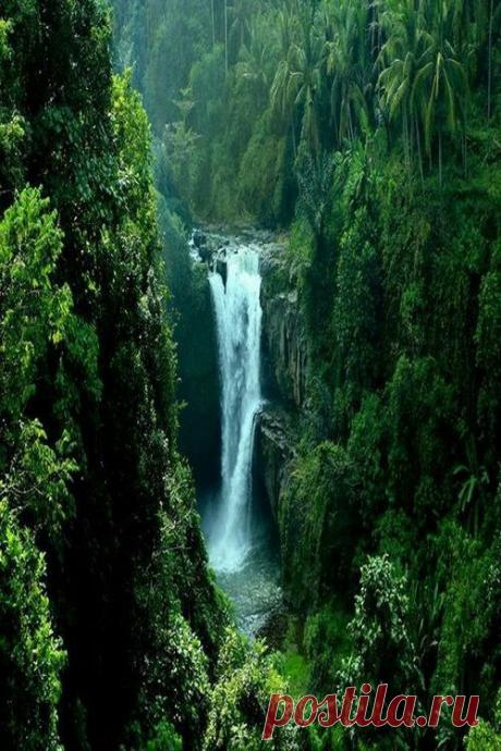 """dreamingofgoingthere:\u000d\u000a""""New Guinea ~ Waterfall"""""""
