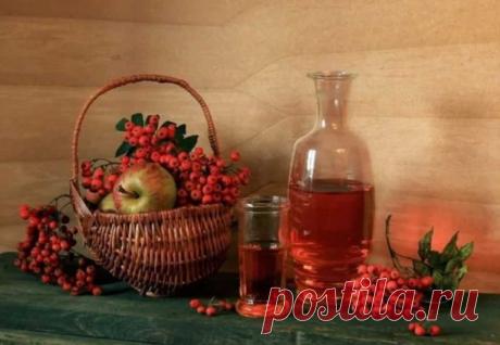 Вкусная панацея из красной рябины на всю зиму. | DiDinfo | Яндекс Дзен