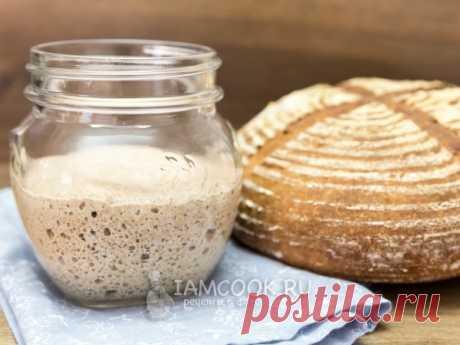 Ржаная закваска для хлеба — рецепт с фото