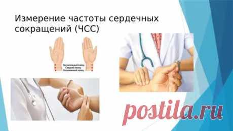Какой пульс считается нормальным у женщин в состоянии покоя: норма по возрастам - ПолонСил.ру - социальная сеть здоровья - медиаплатформа МирТесен