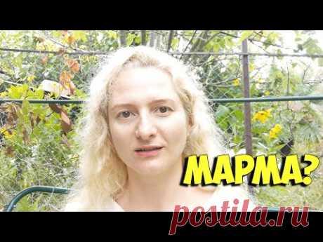Что нужно знать про марма массаж перед тем, как на него пойти? - YouTube