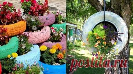The aunt Roza from Odessa knows how to make an unusual bed literally of nothing! Flower beds in old things — the best.