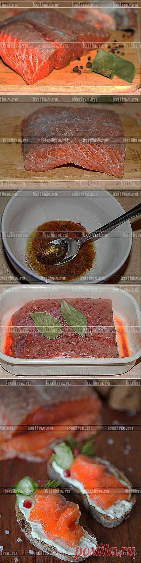 Salmon light-salted with pomegranate – the recipe of preparation with a photo from Kulina.Ru | postila.ru\/post\/category\/shopping