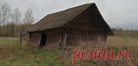 Подглядел, как раньше строили сараи под сухое сено и солому | Хозяйство Воронова | Яндекс Дзен