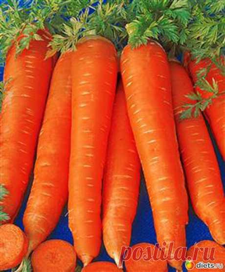Сею морковь по собственной технологии