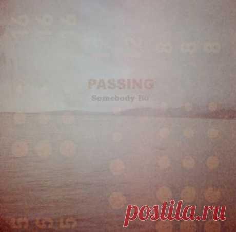 Somebody Bo (Россия) - Passing - METICULOUS MIDGETS - сетевой арт-лейбл, интернет-радио
