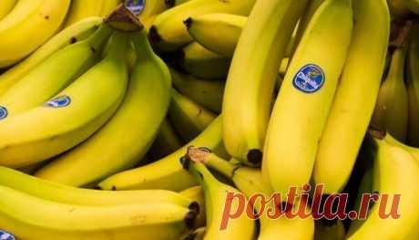 Что будет если есть бананы каждый день и какие изменения произойдут в организме. | Блоги о даче и огороде, рецептах, красоте и правильном питании, рыбалке, ремонте и интерьере