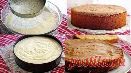 Медовый бисквит очень удачный рецепт