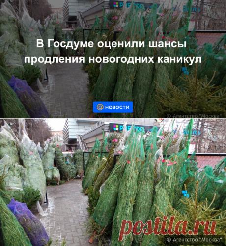 В Госдуме оценили шансы продления новогодних каникул до 24 ЯНВАРЯ 2021- Новости Mail.ru