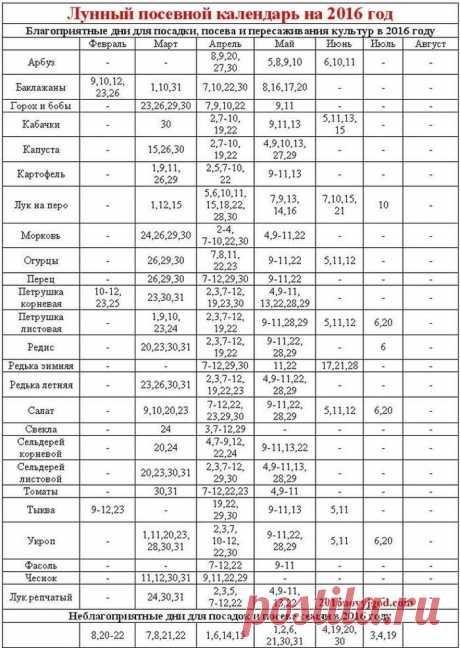 Лунный календарь огородника на февраль 2016