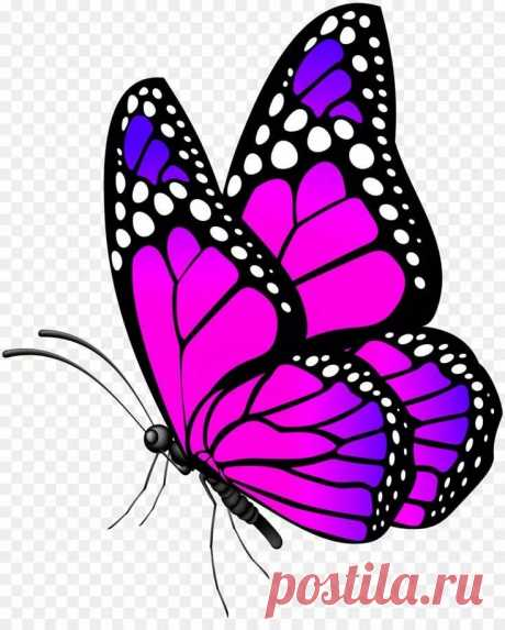 Пин от пользователя elena на доске вафельные картинки Шаблон бабочка, Крылья бабочки и Карандашные рисунки в Яндекс.Коллекциях